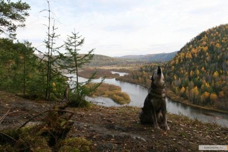 Александр пушкин - во глубине сибирских руд